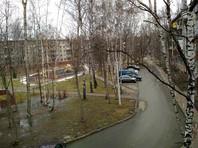 Аномальное тепло на европейской территории России: побиты рекорды, проснулись медведи, цветут подснежники (ФОТО, ВИДЕО) - «Москва»