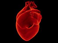 Лечением болезней сердца займутся стволовые клетки - «Медицина»