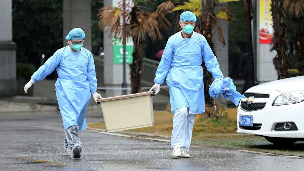Минздрав раскрыл детали разработки тестов, определяющих коронавирус - «Медицина»