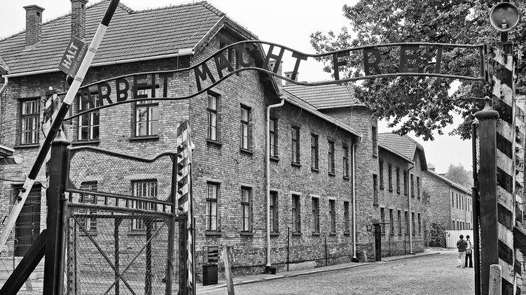 Освобождение Освенцима, конец бойкота ПАСЕ, китайский вирус: две угрозы для Украины - «Новости дня»