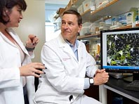 Открытие: у людей с паркинсонизмом клетки мозга изначально работают неправильным образом - «Медицина»