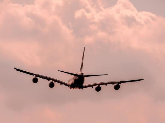 В Домодедово сел самолет с угрожающей взрывом пассажиркой - «Новости дня»